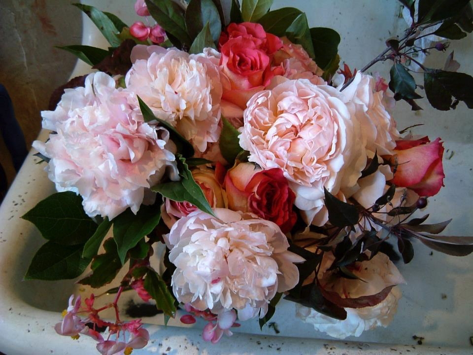 A bountiful arrangement of peonies fills this old porcelain sink.